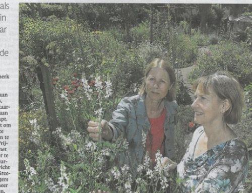 """""""Oorlog en vrede in een botanische tuin"""""""