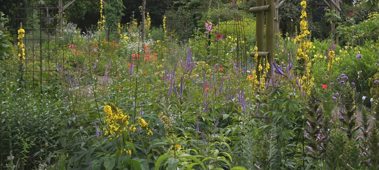 toortsen in de tuin