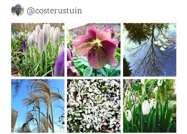 Costerustuin op Instagram en Tumblr