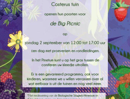 Big Picnic in de tuin op 2 september