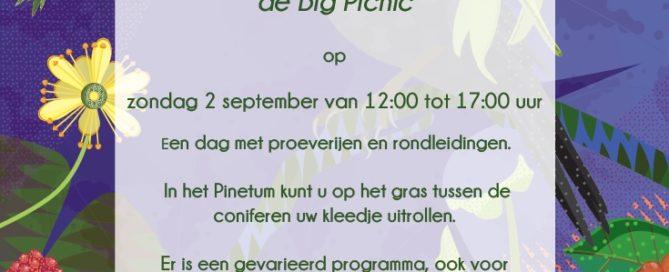Big Picnic 2018