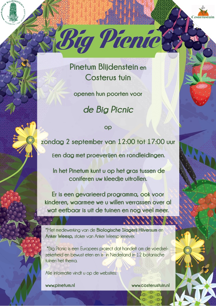 Big Picnic in de tuin op 2 september